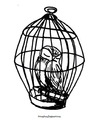 Harry Potter Owl Coloring Page